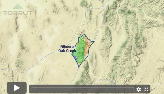 Utah Mule Deer Fillmore Oak Creek Le Draw Odds Tag Information