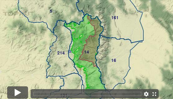 Colorado Elk - Unit 14 - Draw Odds, Tag Information and More