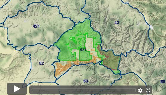 Colorado Elk - Unit 521 - Draw Odds, Tag Information and More