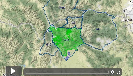 Colorado Mountain Goat Unit G16 Draw Odds Tag